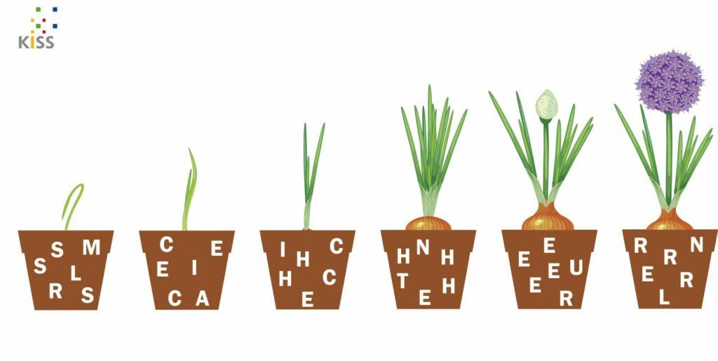 Bild: verschiedene Blumentöpfe mit Buchstaben drin